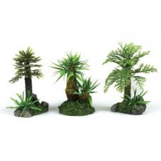 3 X Tropical  Plant Assortment