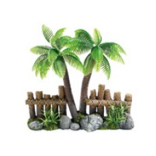 Tropical Coconut Tree & Fence