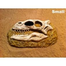 Dinosaur Skull Hide / Cave